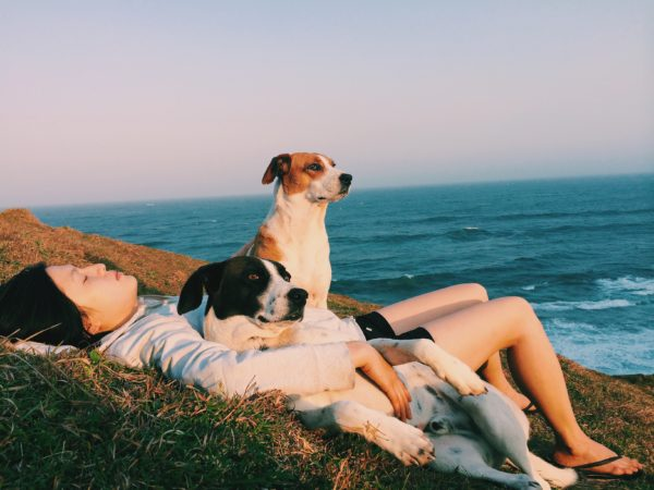 Laying by the water with dogs, summer vibes, virtual writing workshops for teens